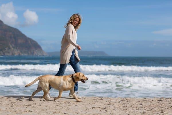 Een wandelschema kan je helpen met een gezonde leefstijl