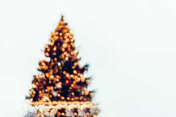 Koolhydraatarme kerstmenu's kan je vinden in dit artikel. Voorgerechten, hoofdgerechten, bijgerechten en nagerechten