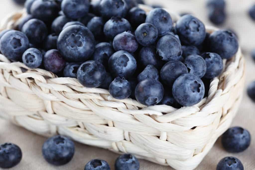 blauwe bessen gezond in wit mandje