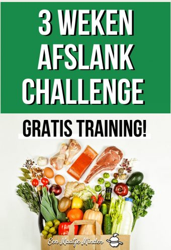 3 Weken Afslank Challenge - Gratis Training!-page-001 (1)